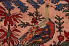 Antique Red Animal Pictorial Kazak Caucasian Russian Oriental Area Rug 5x6 ft