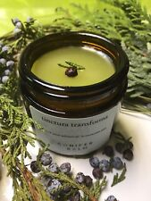 Enchanted Forest Conifer Balm, Healing Balm, Wounds, Joints pain, Coughing, Ches