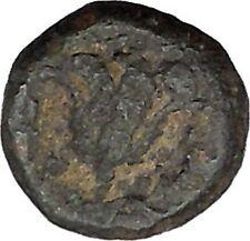 Rhodes, Islands off Caria 394BC RARE Ancient Greek Coin Nymph Rose   i45703