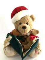 Mrs. Santa Bear tells The Night Before Christmas Pan Asian Creations Animated