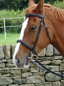 Turners Stunning Black Leather Snaffle Cavesson Horse Riding Bridle with Reins