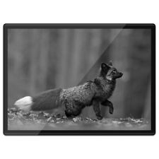 Plastic Placemat A3 BW - Wild Black Silver Fox Animal  #42584