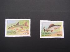 MNH LOT of 2 stamps - FISHES - barbus/thymallus - BELARUS - 1997