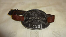 1930's/40's County Of Glamorgan Youth Offender/Prison/Borstal Arm Plaque/Badge