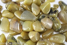 *ONE* Olive Opal Tumbled Stones 30mm QTY1 Green Healing Crystals Calm Stress