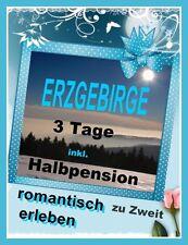 3 Tage HALBPENSION ERZGEBIRGE für 2 PERS. 4*HOTEL WOHLFÜHLEN-WELLNESS+WANDERN