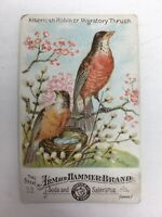 Arm Hammer Scarce Birds Of America #53 Victorian Trade Card American Robin