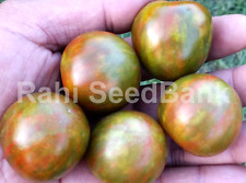 Black Zebra Cherry Tomato - 10 Seeds!