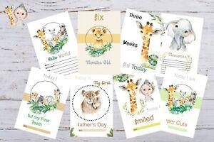 "Baby Milestone Cards Safari Animals Unisex Pack of 34 baby gift 300 gsm 4""x6"""
