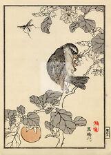 ANTIQUE Original Kono Bairei Woodblock Japanese Print 1881 Bird Eating #D998