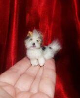 BIEWER TERRIER dog OOAK 1:12 realistic dollhouse miniature handmade handsculpted