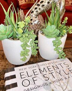 New Artificial Flowers Arrangements Succulent Planter Cactus Two Centerpiece