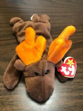 Ty Beanie Baby Chocolate the Moose 4015 1993 Mint Condition PVC