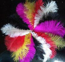 """Coloured Ostrich Feathers6-8"""" 8-10"""" 10-12"""" 12-14"""" 15-20cm 20-25cm25-30cm 30-35cm"""