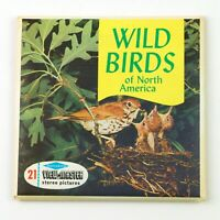 Vintage View-Master Reels Set Packet B611 WILD BIRDS OF NORTH AMERICA 1955