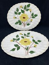 Blue Ridge Pottery Yellow Nocturn Platters