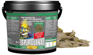 Spirulina fish food flake JBL Germany Company, protein fish food Spirulina algae
