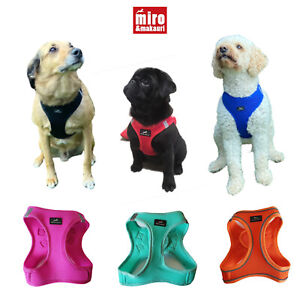 Miro & Makauri Premium Step In Soft Mesh Dog Harness Bright Colours Puppy
