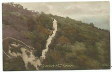 SOMERSET / EXMOOR - PORLOCK HILL with HORSEDRAWN CARRIAGES nr Minehead Postcard