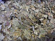 Neem Leaf Loose Whole Herb 100g