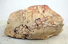 Kanab Picture Rock - 3 lb., 14.3 oz.  #1802