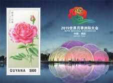 Guyana 2019 rose ,flower I201901
