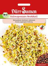 4089 Dürr BIO Keimsprossen Brokkoli ca.25g Würzig pikanter Geschmack Samen