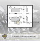 PER KAWASAKI KX 250 DAL 1995 AL 2008 COPPIA PASTIGLIE FRENO POSTERIORI BRAKING S