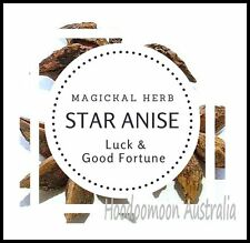 Star Anise - 10g - Magickal Herb Wicca Hoodoo