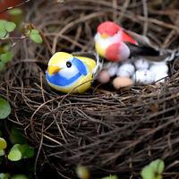 Lovely DIY Miniature Fairy Garden Little Bird/Egg/Nest Micro Landscape Decor