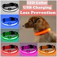 LED Glow Dogs Leash Collar Personalised Adjustable Safety Adjustable Collar AU