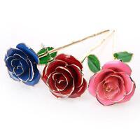 (US) Valentine's Day Gift Gilded Rose Flowers for Girlfriend Gift  for Wedding