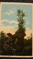 1920s Lava tree, Hawaii  by Moses, Hilo