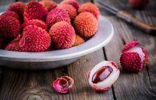 10 Litchi Fruit Seeds Mixed Tasty Sweet Tree Garden Home Perennial Plant Bonsai