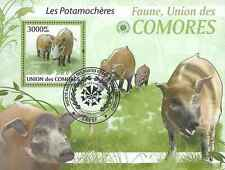 Timbre Animaux Comores BF207 o année 2009 lot 19824 - cote : 21 €