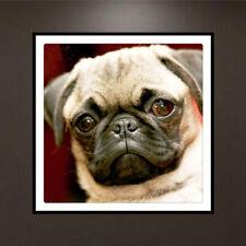 DIY 5D Diamond Painting Kit Pug Dog Cross Stitch Home Decor Craft UK Seller