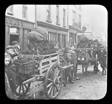 Irish Children Coal For Sale High Street Killarney Ireland Magic Lantern Slide