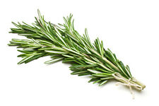 15ml Pure Rosemary Essential Oil, Aromatherapy Rose Mary