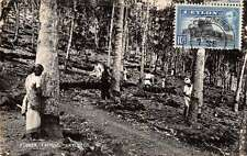 Somewhere in Ceylon view of woman rubber tapping real photo pc Y14664