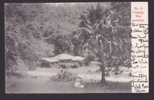 Malaya Malaysia 1900? Kaulfuss&Co Real Photo Postcard Penang The Gardens