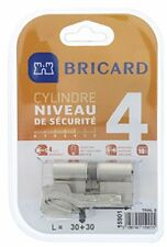 Bricard 15901 cylindre Trial S 30 30 Nickelé Double Ent