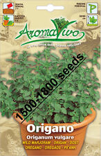 Wild Marjoram Herb Seeds (1500 - 1800) seeds Superior Quality Very Fresh seeds.
