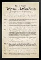 Bill of Rights of The USA Historical Document Framed Poster 14x20