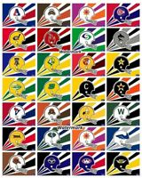 WFL World Football League 1974 - 1975 All Team Logo's Color 8 x 10 Photo Picture