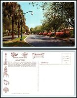 GEORGIA Postcard - Savannah, Victory Drive F47