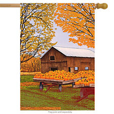 Pumpkinville Western NY Fall House Flag Autumn