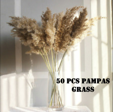 Wedding Decor Real Flower Plant Stems Pampas Grass Reed Natural Dried Bouquets