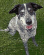 "Gris JACK RUSSELL PUPPY Chien en herbe-Cross Stitch Kit 8 ""x 10"" - 14 comte Aida"