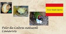 Pelo de cabra natural para canarios diamantes y otros para hacer el nido 20g