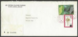 Belize 1979-83 10c on 15c Seahell used on registered 1983 cover Scott #422